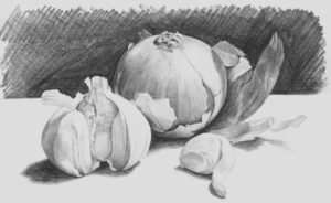 how-to-draw-onions-and-garlic-770